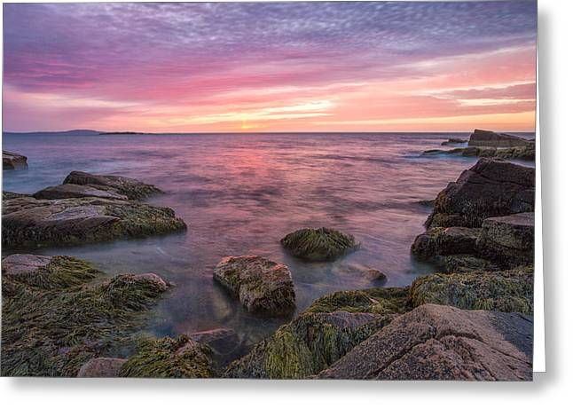 Colorful Sunset Greeting Cards Greeting Cards - Sky Purple Greeting Card by Jon Glaser