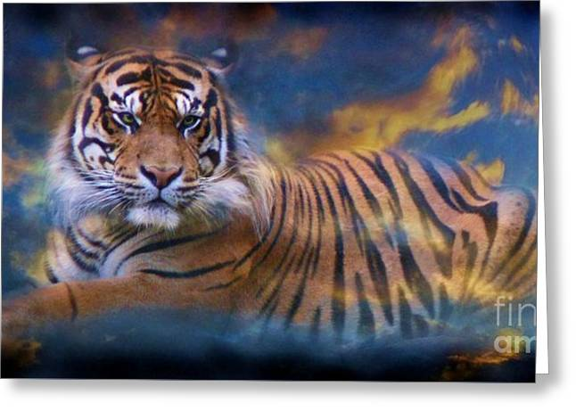 Preditor Greeting Cards - H Sky Tiger Greeting Card by Dale Crum