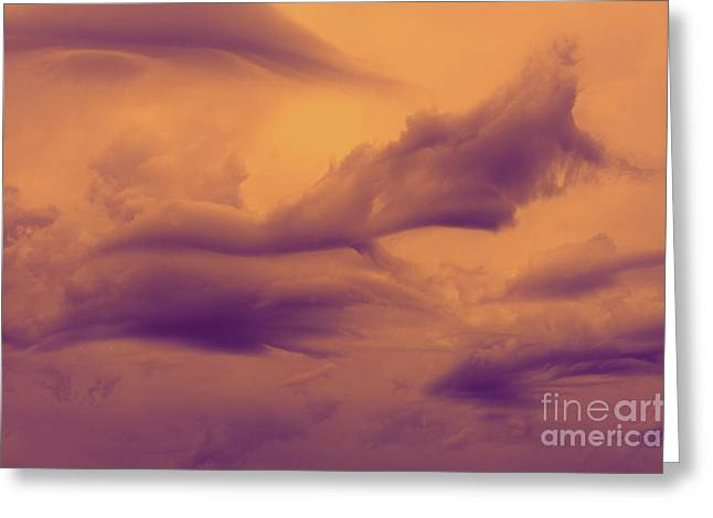 Whale Photographs Greeting Cards - Sky Whales... Greeting Card by Nina Stavlund