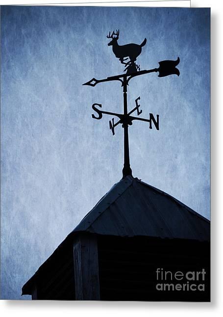Weathervane Greeting Cards - Skyfall Deer Weathervane  Greeting Card by Edward Fielding