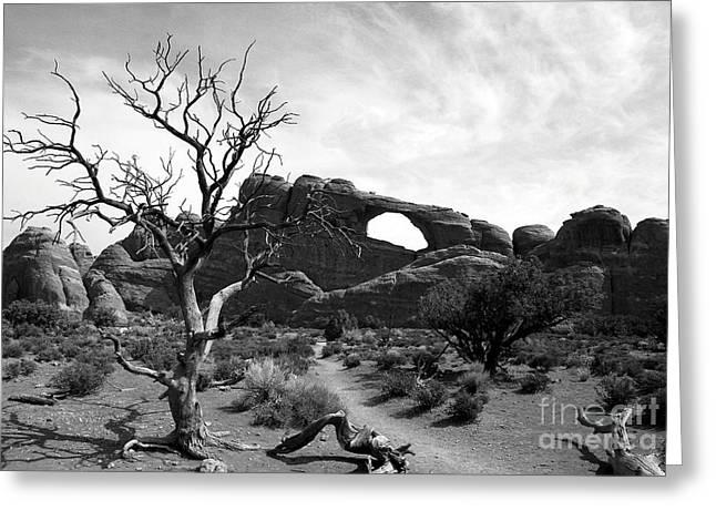 Arches National Park Pine Trees Greeting Cards - Skyline Arch 3 BW Greeting Card by Mel Steinhauer
