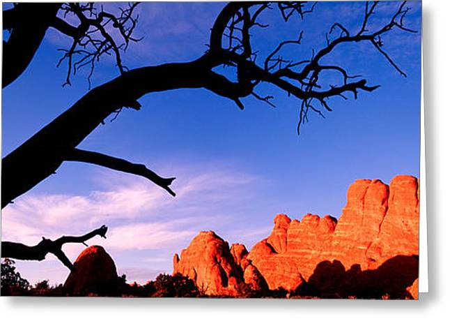 Bare Trees Greeting Cards - Skyline Arch, Arches National Park Greeting Card by Panoramic Images