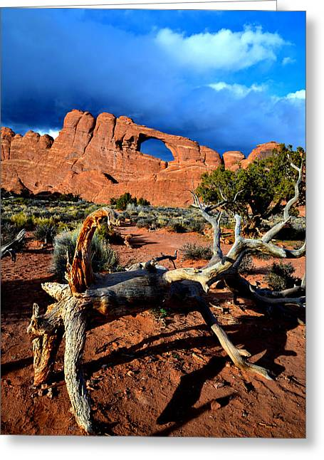 Skyline Arch Greeting Cards - Skyline Arch Storm Greeting Card by Ray Mathis
