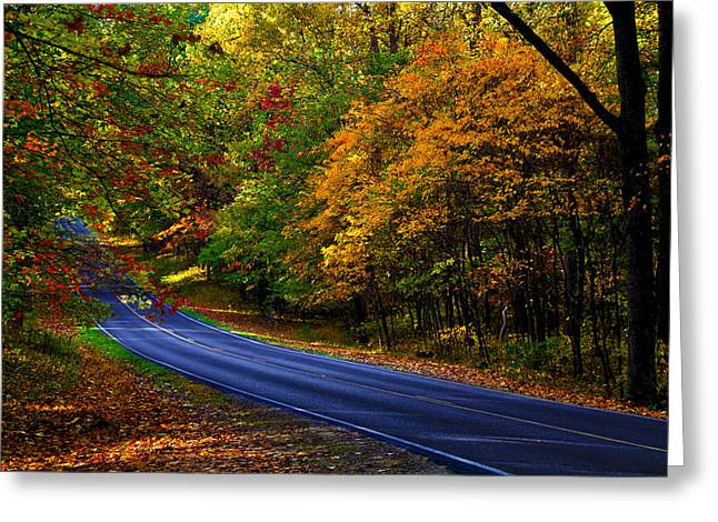 Scenic Drive Greeting Cards - Skyline Drive 2 Greeting Card by Mitch Cat