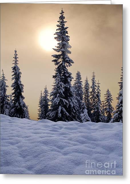 Hike Greeting Cards - Skyline Lake Winter Sun Greeting Card by Inge Johnsson