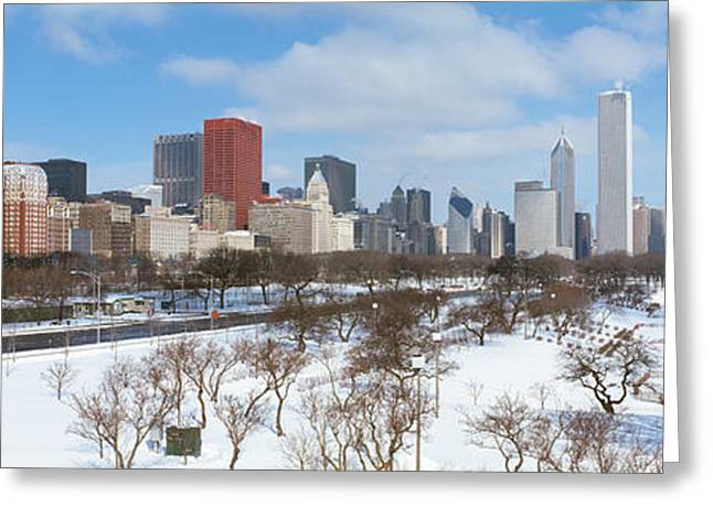 Bare Trees Greeting Cards - Skyscrapers In A City, Grant Park Greeting Card by Panoramic Images