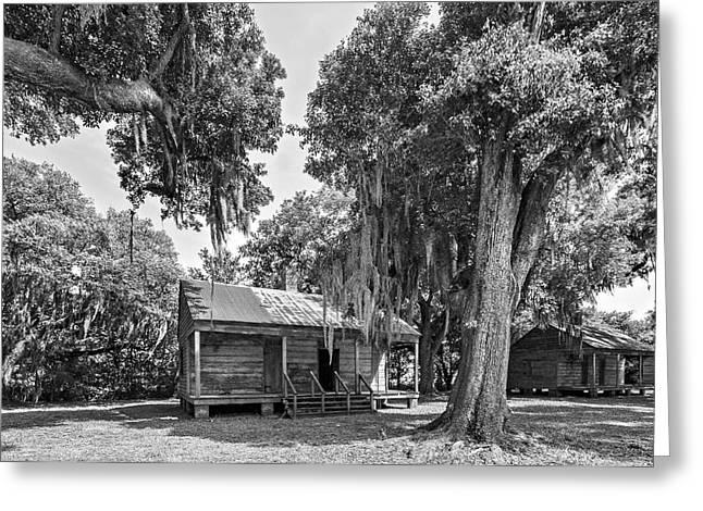 Evergreen Plantation Photographs Greeting Cards - Slave Quarters 2 monochrome Greeting Card by Steve Harrington