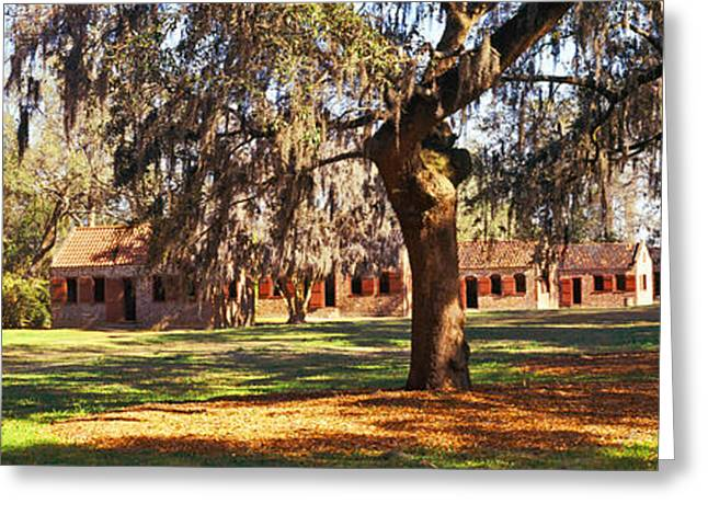 Slaves Photographs Greeting Cards - Slave Quarters, Boone Hall Plantation Greeting Card by Panoramic Images