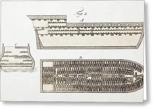 Slave Ship Diagrams Greeting Card by Paul D Stewart