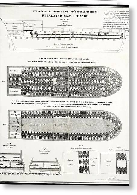 """leg Irons"" Greeting Cards - Slave Ship Middle Passage Stowage Diagram  1788 Greeting Card by Daniel Hagerman"