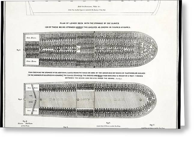 SLAVE SHIP MIDDLE PASSAGE STOWAGE DIAGRAM  1788 Greeting Card by Daniel Hagerman
