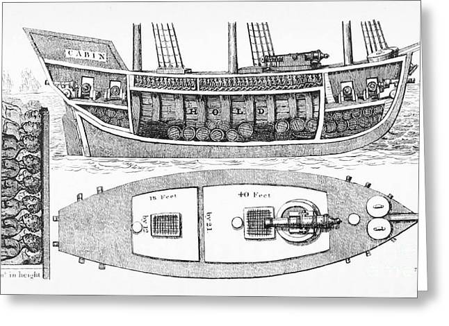 Slaves Greeting Cards - Slave Ship Plan Showing Slaves In Hold Greeting Card by British Library