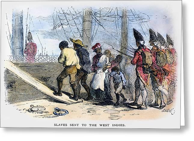 Bayonet Greeting Cards - Slavery: West Indies, 1780 Greeting Card by Granger