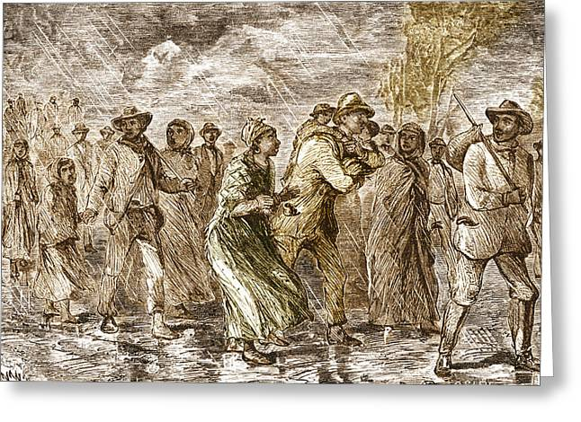 Slaves Escaping Via Underground Railroad Greeting Card by Science Source