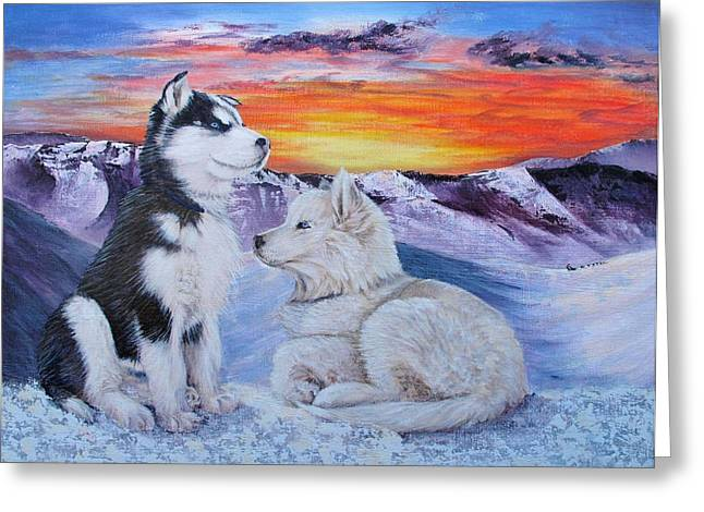 Sled Dog Dreams Greeting Card by Karen  Peterson