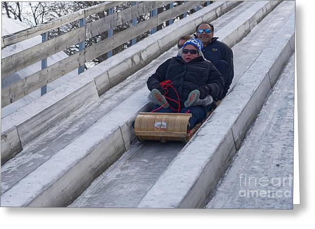 Tobogganing Greeting Cards - Sledging Fright Greeting Card by Colin Woods