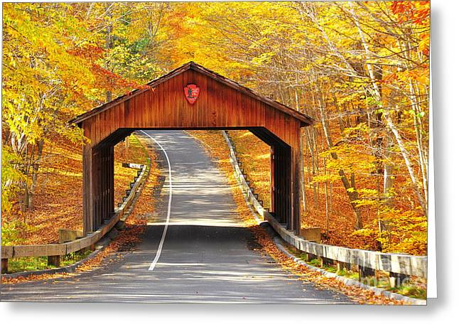 Recently Sold -  - Scenic Drive Greeting Cards - Sleeping Bear National Lakeshore Covered Bridge Greeting Card by Terri Gostola