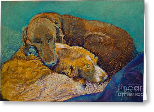 Breeds Pastels Greeting Cards - Sleeping Double in a Single Bed Greeting Card by Tracy L Teeter
