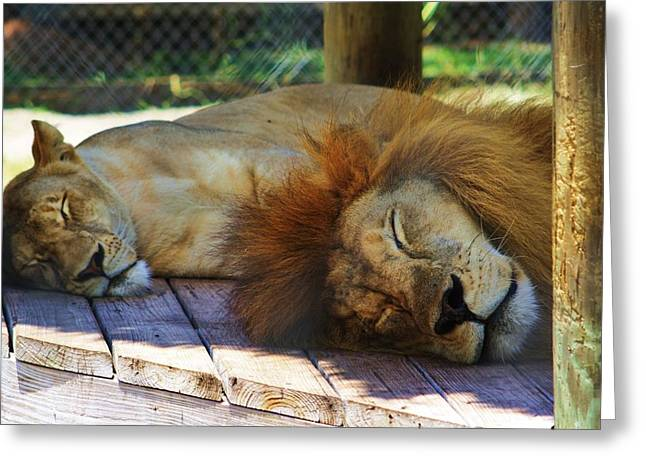 Pairs Greeting Cards - Sleeping King And Queen Greeting Card by Chuck  Hicks