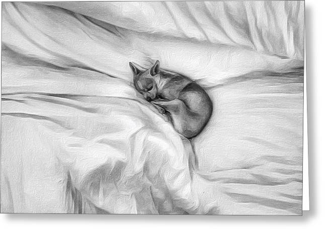 Chihuahua Artwork Greeting Cards - Sleeping Chihuahua Greeting Card by Leo Koach