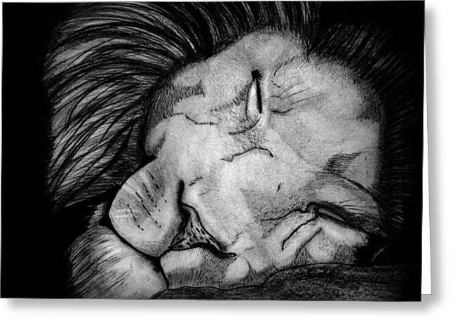 Saki Art Greeting Cards - Sleeping Lion Greeting Card by Saki Art