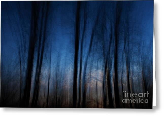 Festblues Greeting Cards - Sleepwalking... Greeting Card by Nina Stavlund