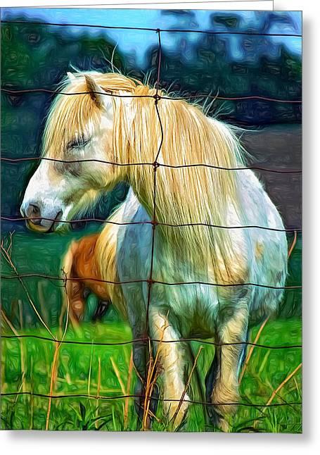 Equestrian Prints Greeting Cards - Sleepy Girl 2 Greeting Card by Steve Harrington