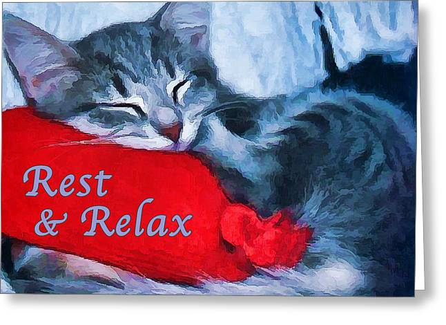 Cute Digital Greeting Cards - Sleepy Kitten - Rest Greeting Card by Bill Caldwell -        ABeautifulSky Photography