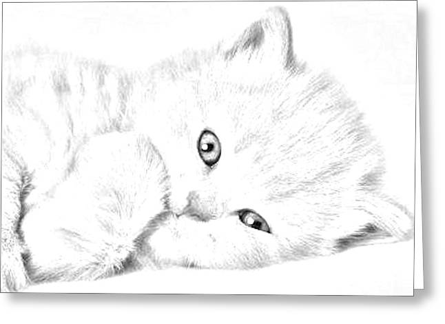 Sleepy Kitty Greeting Card by J D Owen