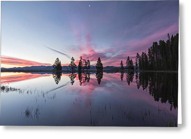 Slide into the Day Greeting Card by Jon Glaser