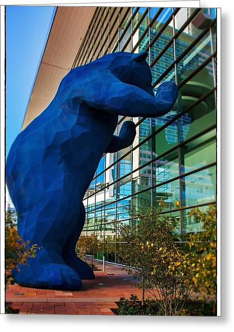 Postkarte Greeting Cards - Slightly Blurry Denver Bear Greeting Card by For Ninety One Days
