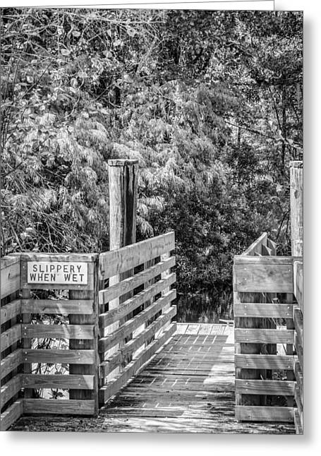 Photos Fitness Greeting Cards - Slippery When Wet BW Greeting Card by Carolyn Marshall