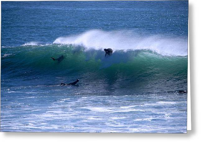 Santa Cruz Surfing Greeting Cards - Slipping In And Out Greeting Card by Eric Tressler