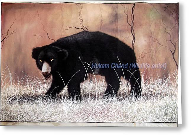 ''sloth Bear In Hunting Position'' Greeting Card by Hukam Chand Wildlife artist