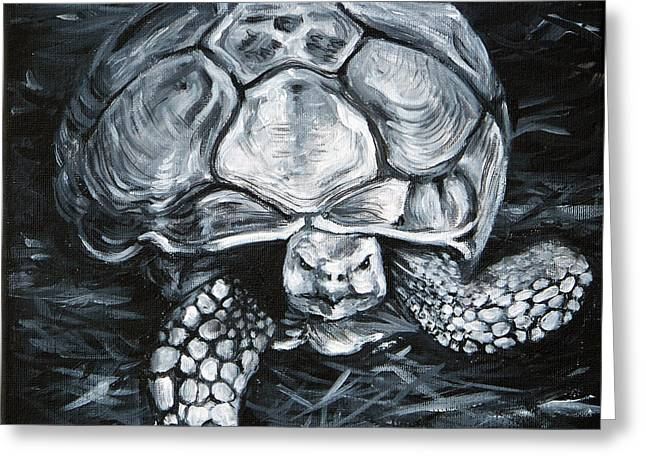 Tortuous Greeting Cards - Slow and Steady Greeting Card by Deborah Smith