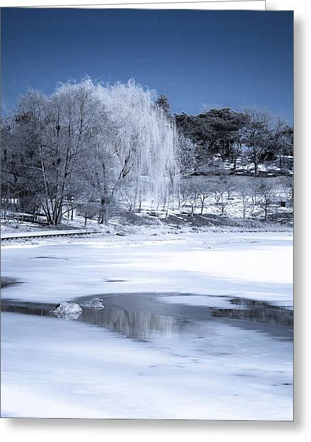 Snow Scene Landscape Greeting Cards - Slowly Melting Away Greeting Card by Julie Palencia