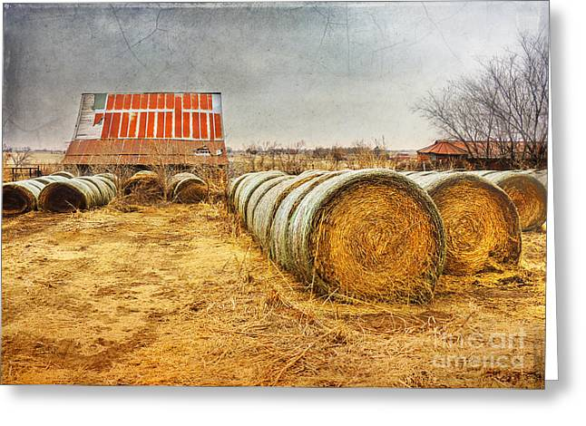 Barn Landscape Photographs Greeting Cards - Slumbering in the Countryside Greeting Card by Betty LaRue