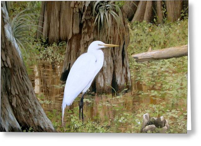 Great Egret Greeting Cards - Small but Great Greeting Card by Tim Davis
