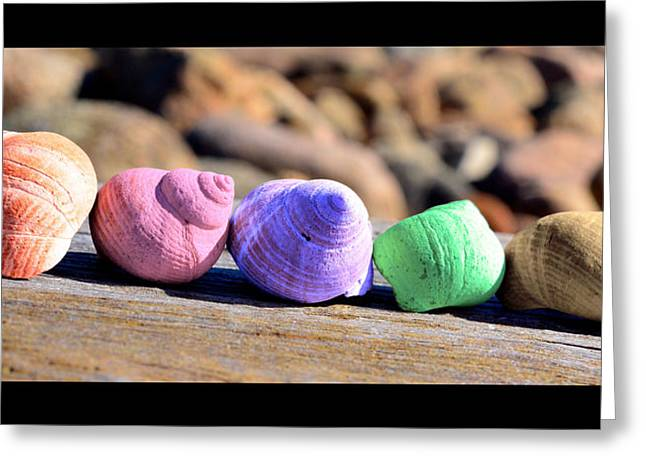 Shell Pattern Greeting Cards - Small colored seashells / snails Greeting Card by Toppart Sweden