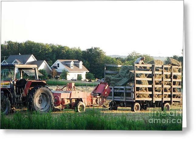 Esem8chart.com Greeting Cards - Small Farm Greeting Card by Sarah Holenstein