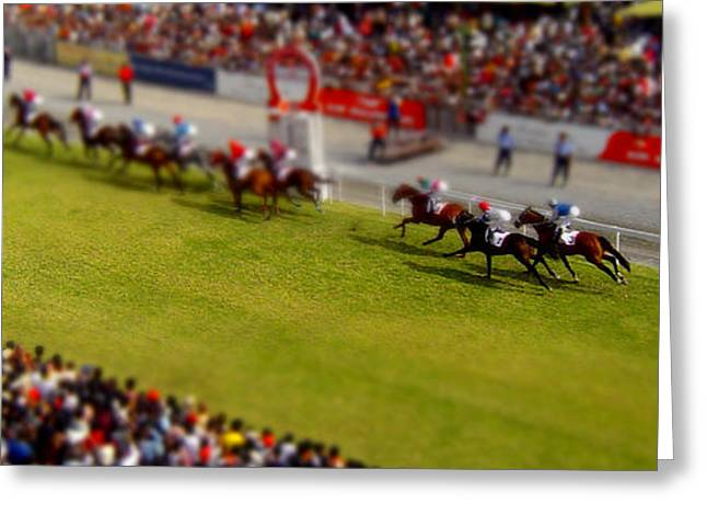 Race Horse Greeting Cards - Small Horse Race Greeting Card by David Balber
