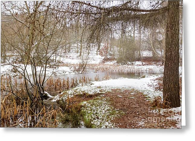 Cannock Chase Greeting Cards - Small Lake in the Snow Greeting Card by Ann Garrett