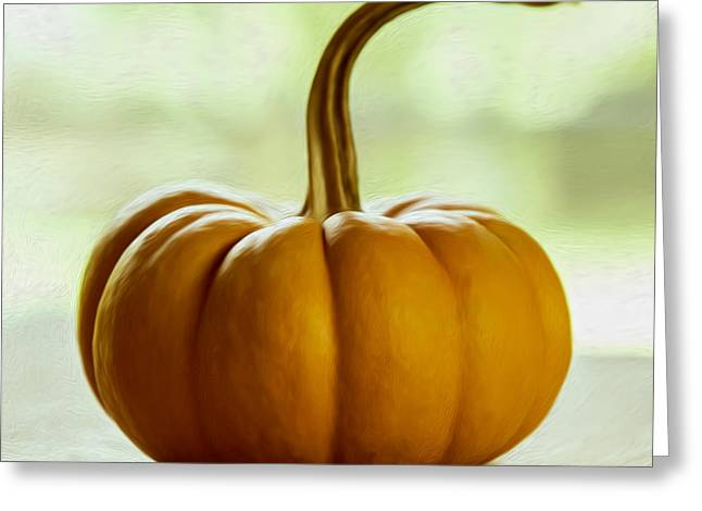 Commercial Photography Greeting Cards - Small Orange Pumpkin Greeting Card by Iris Richardson