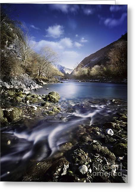 Reflections Of Trees In River Greeting Cards - Small Stream Flowing Into The Mountain Greeting Card by Evgeny Kuklev