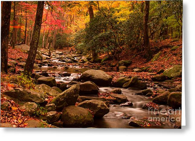 Geraldine Deboer Greeting Cards - Small Stream Greeting Card by Geraldine DeBoer