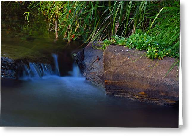 Cullowhee Greeting Cards - Small Waterfall Greeting Card by Bryant Mountjoy