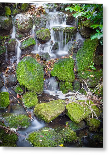 Pouring Greeting Cards - Small Waterfall in Marlay Park Greeting Card by Semmick Photo