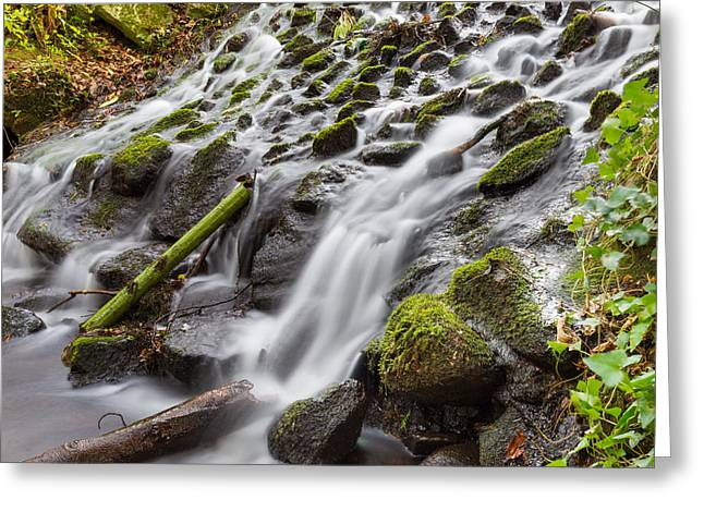 Pouring Greeting Cards - Small Waterfalls in Marlay Park Greeting Card by Semmick Photo
