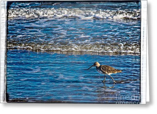 Small Waves Greeting Card by Perry Webster