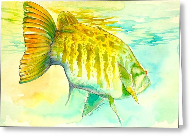 Trout Fishing Greeting Cards - Smallie Patrol Greeting Card by Yusniel Santos